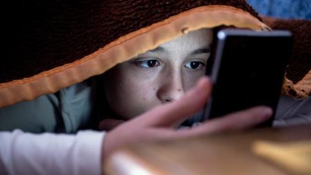 pupils 'ill-equipped , social media