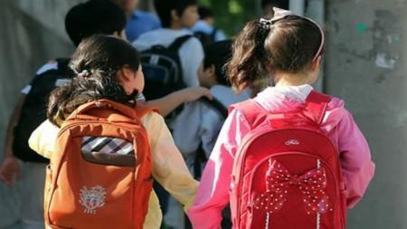 primary schoolers , South Korea, private education