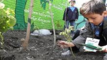 environmental schools planned