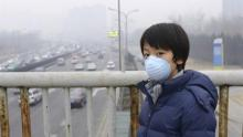 Air pollution exposure reduces children's working memory